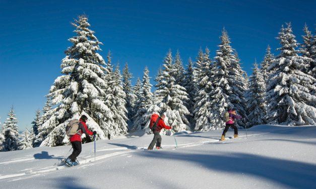Les plus belles destinations ski des Alpes, en France