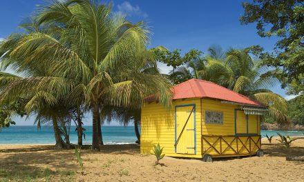 Les plus belles plages de Basse-Terre