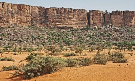 Que faire et que visiter au Mali?