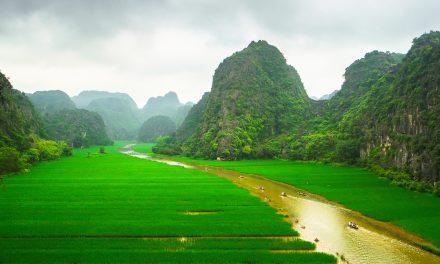 À quelle saison voyager au Vietnam?